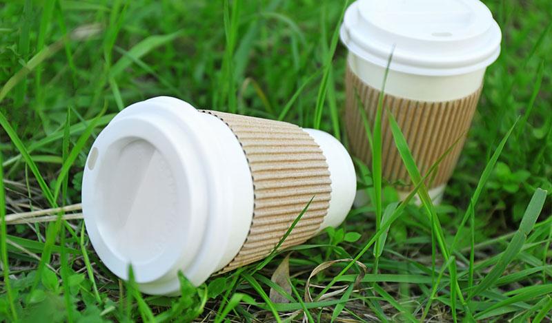 כוסות חד פעמיות - האפשרות הירוקה והבריאה מכולן
